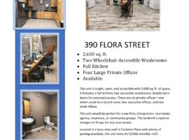 GORGEOUS LARGE COMMERCIAL SPACE IN CARLETON PLACE - AVAILABLE NOW!
